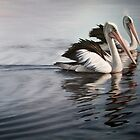 """""""In Respect of the Pelican"""" by Michelle Caitens"""