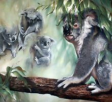 """""""The Face behind the Eucalypts"""" by Michelle Caitens"""