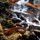 High shoal falls II by PJS15204