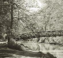 Along the Tow Path Trail by Mitch Labuda