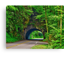 Tunnel to Cades Cove Canvas Print