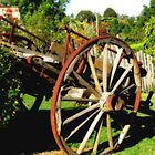 Wagon - Hill End, New South Wales by Marilyn Harris
