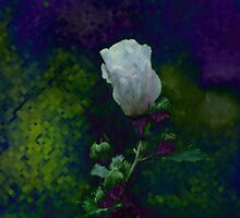 pixel rose of sharon... by dabadac