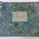 johann strauss , 19th century piano album by lewthwaitemusic