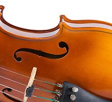 Violin by homydesign