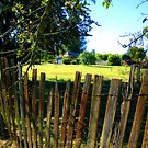 Fenced - View to Ackerman's Cottage - Hill End by Marilyn Harris