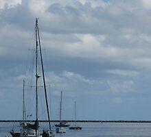 Six Sailboats by ronholiday
