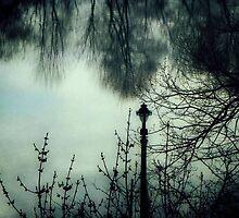 Blue Lagoon © by Dawn M. Becker