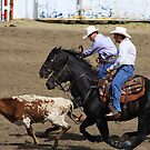 Calf Roping by Alyce Taylor