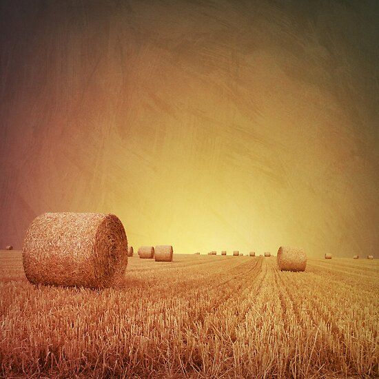 Straw Bales by Binkski