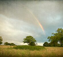 Rainbow over Wramplingham, Norfolk by DaveTurner