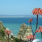 Algarvean South Coast by Meladana