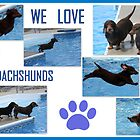 WE LOVE OUR DACHSHUNDS by Heidi Mooney-Hill