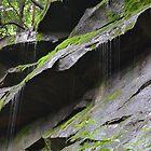 Small Waterfalls near Swanton, MD  by joannelheureux