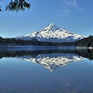 Lost Lake by Bob Hortman