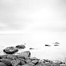 The Giants Causeway 4 B&W by Nicole Orlowski