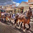 The Coach ride - Sovereignhill  by Hans Kawitzki