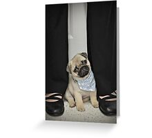 Mr. Vincent Greeting Card