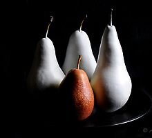 Pears on black by andyw