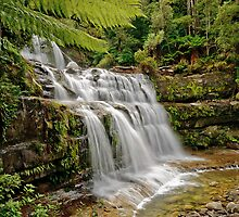 Liffey Falls 1 by traveller