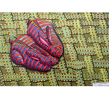 341 - CUDDLY BUNNIES - DAVE EDWARDS - COLOURED PENCILS & FINELINERS - 2011 Photographic Print