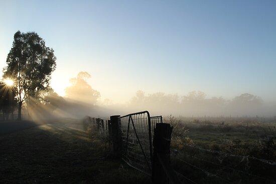 Burning off the Mist - Echuca by jonxiv