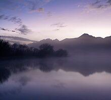 Purple Haze by Odille Esmonde-Morgan
