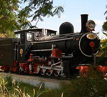Namibian Train by IngridSonja