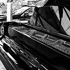 Piano Black by Kasia-D