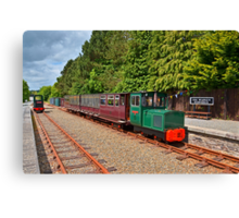 Waterford & Suir Valley Railway Canvas Print