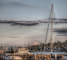 Sunset over Rainier by Mari  Wirta