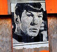 Spock by Janie. D