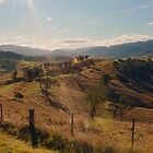 Afternoon Sun at Barrington by jayneeldred