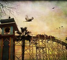 Roller Coaster by Margi