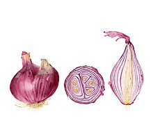 red onions stilllife by Vanessa Pasqualetto