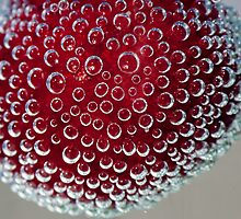 Fizzy Cherry by Simon Hills