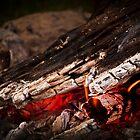 Campfire! by Ryan Cawse