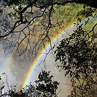 Is the pot of Gold truly at the end of the rainbow? by MarkySA