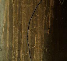 petroglyphs by Nikolay Semyonov