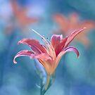 Fleur de Lys  I by Maria Ismanah Schulze-Vorberg