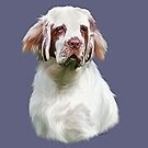 Queen woo woo the Clumber Spaniel by Cazzie Cathcart