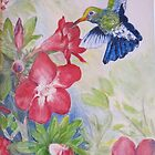 In Adriana's Garden, La Manzanilla, Mexico by Lynda Earley
