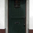 Green Door - St. Augustine by Irina Gallagher