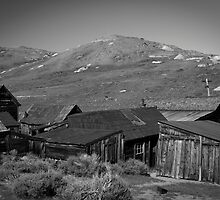 Bodie by Mike Stone