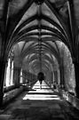 Arcade - Norwich Cathedral by Ursula Rodgers