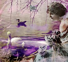 Lady and the Swan by Margi