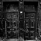 Doors to Oblivion by digihill