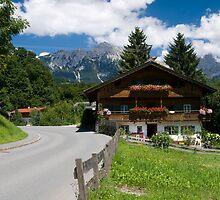 Austrian Living by Robert Taylor
