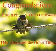 Top Ten Banner by MaryinMaine