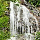 Mingo Falls by Jeff Ore